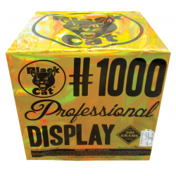 1000 Professional Display
