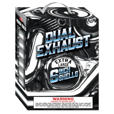 Black Cat Dual Exhaust