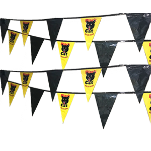 black cat pennants